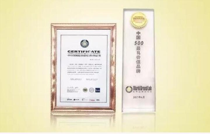 """依波第十四次荣登""""中国500最具价值品牌""""排行榜"""